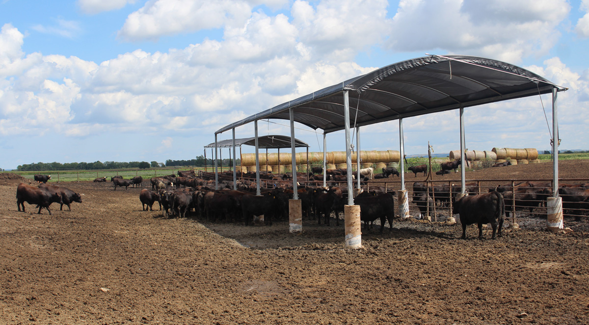 Rush-Co Tailored Covers | Livestock Shade Systems