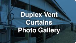 Duplex Btn